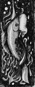 tania-cardoso